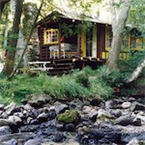 Cozy Log Cabin in Northern Forest - Saint Ignace - Cabana