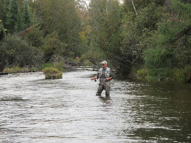 Executive Fly Fishing Ausable River Retreat - Grayling - Bed & Breakfast