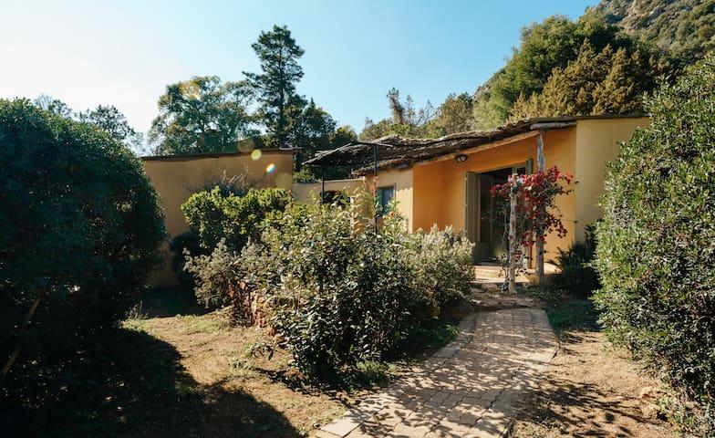 Residence les Bungalows de Palombaggia-105