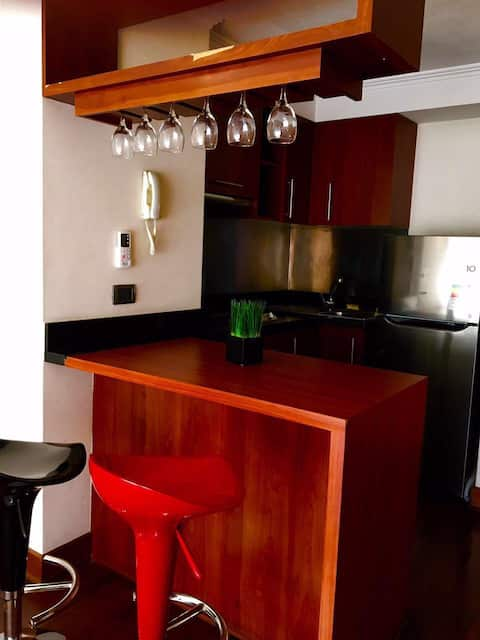 One Bedroom-Providencia-Aparthotel