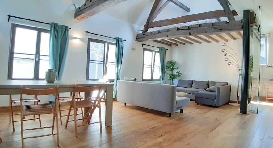 Cathedral Duplex Loft. Best Location in Antwerp