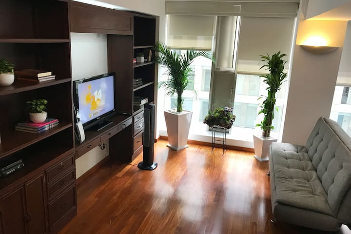 Modern Suite in Downtown Mexico City