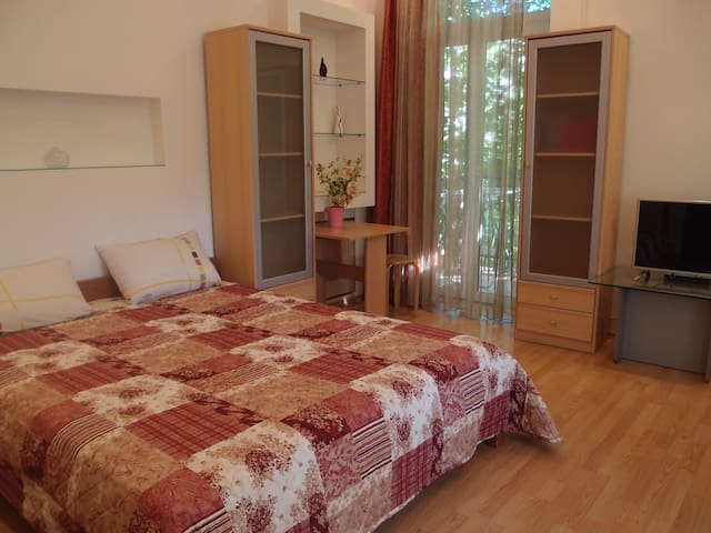Beautiful 1 Bedroom іn the Center,Zankovetska str.
