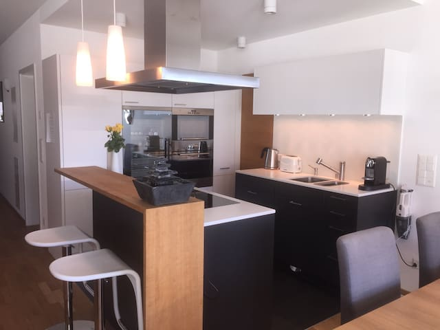 Bulthaup kitchen with wine refrigerator, Nespresso and all appliances