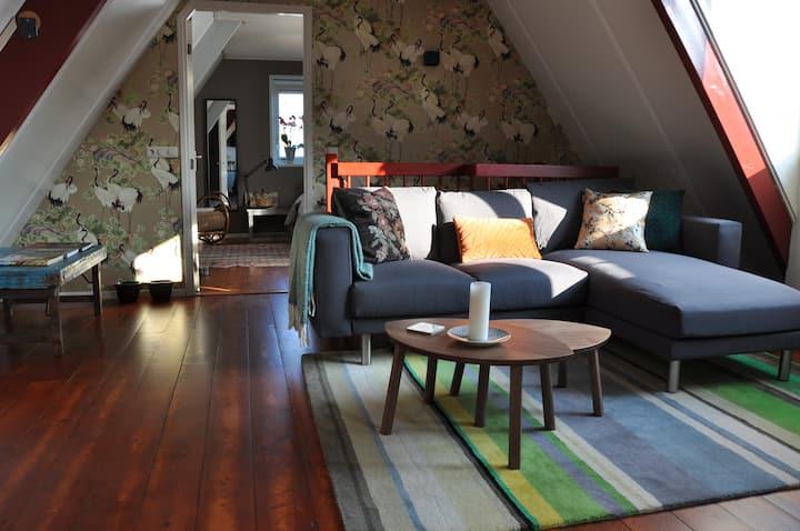 Cozy house in Harlingen city for pleasure & work.