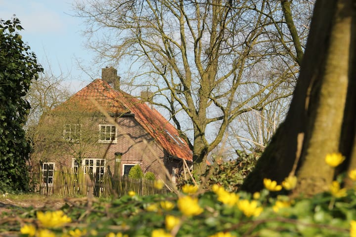 Green Cottage Bed and Breakfast 2 - Groesbeek - Bed & Breakfast