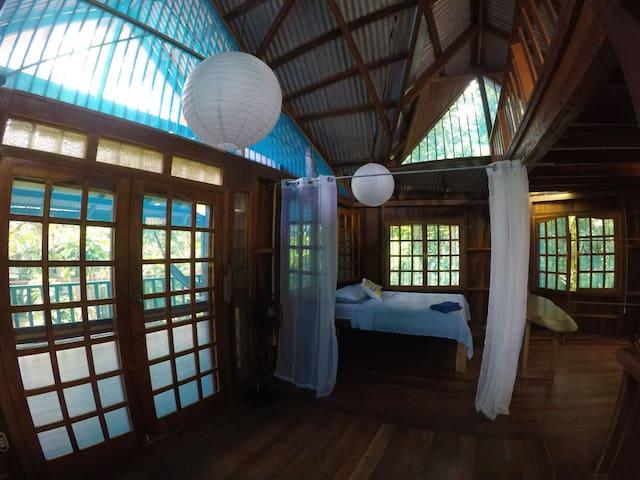 ★★  Palm Paradise - Oceanfront House ★★