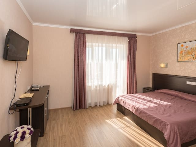 Double room with 1 double bed. Hotel Monarch