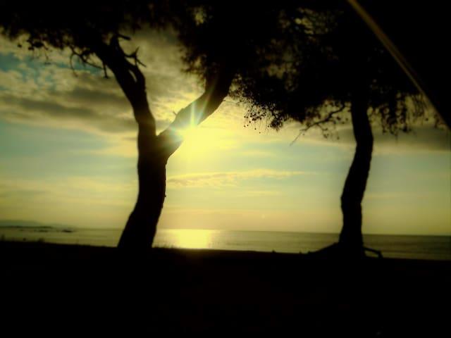 Lovely Seaside Appartment - Αθήνα - Άρτεμις - Lägenhet