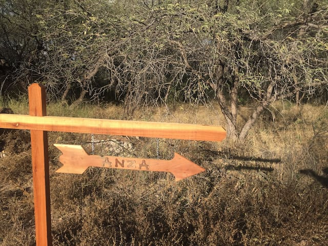 Direct access to historic Anza Trail and important bird area designated by TUCSON AUDUBON SOCIETY from our property
