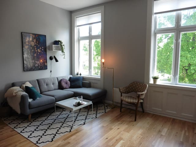 Cosy apartment near everything you want to see - Oslo - Appartement