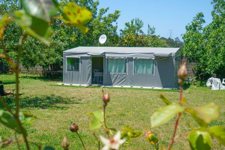 Caravana no jardim da Mini Farm - Bed & Breakfast