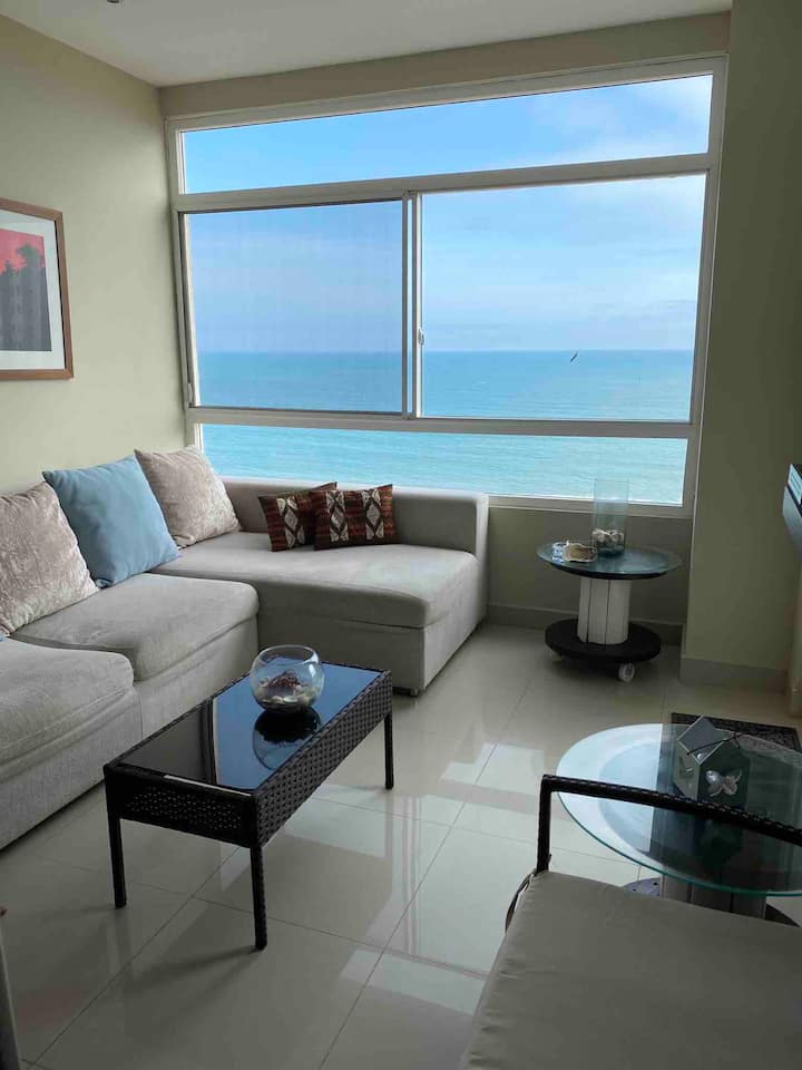 Ocean View Apartment in Playas,  Pet Friendly WIFI
