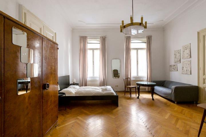 Sunny Big Room near Stephansplatz