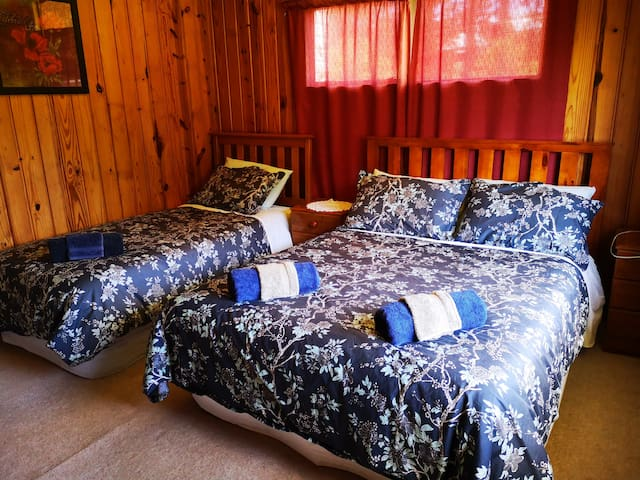 Bedroom 2 ( 1 single and 1 double bed)