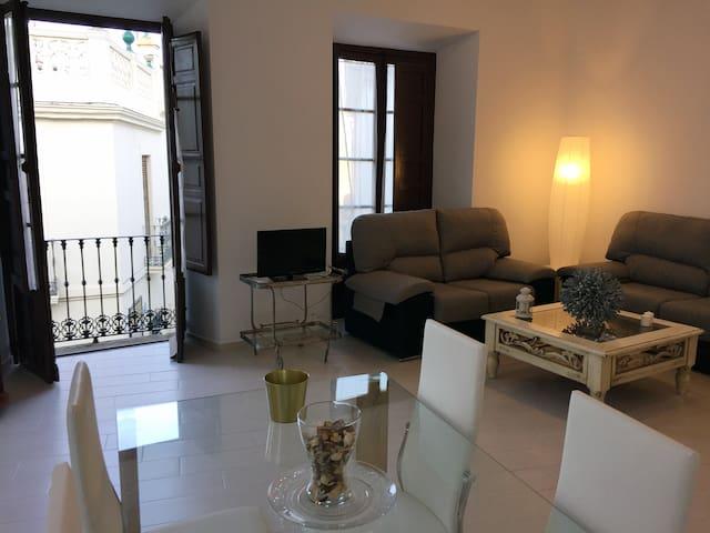 Apto. Doña Concha 2 - Casco Histórico