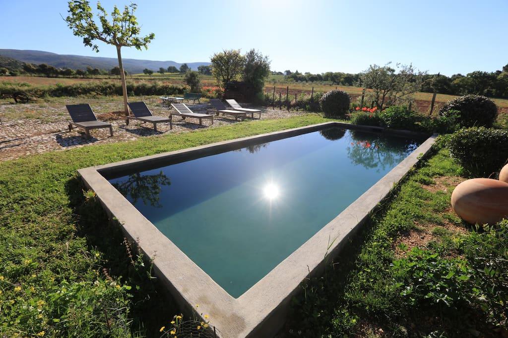 piscine du domaine saint jacques