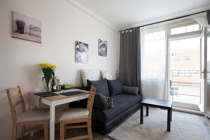 5 min centre -  apartment HOLEŠOVICE