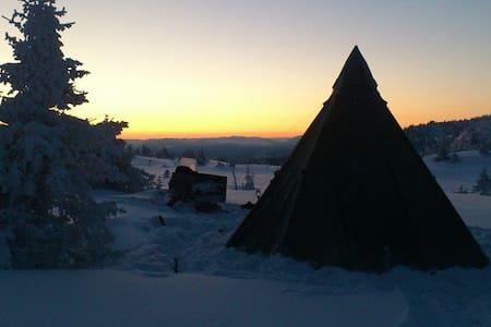 Guided tent trip - B&B Skifterud - Austbygdi