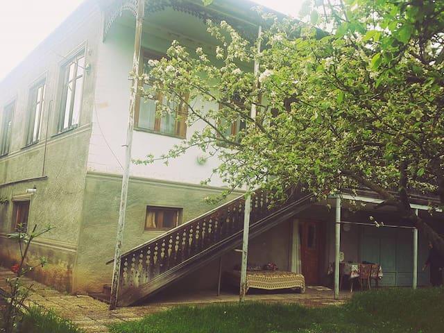 Tianeti Villa
