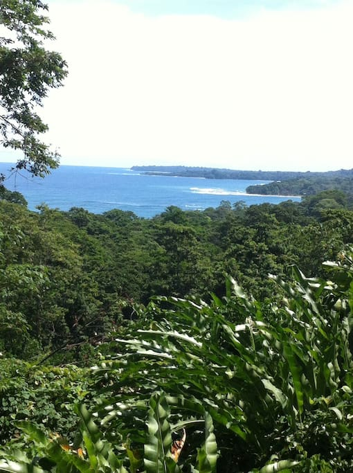 Caribbean Sea view from the chocolate forest