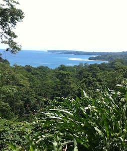 Chocolate Forest with ocean view - Puerto Viejo de Talamanca