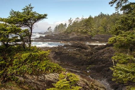 River Raven Retreat: Ready May 2017! - Port Renfrew