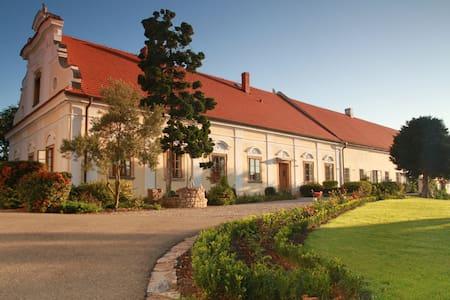 Chateau Liteň near Karlštejn - Liteň - วิลล่า