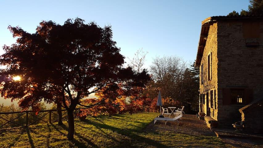 Romantica suite nel bosco - Cosseria