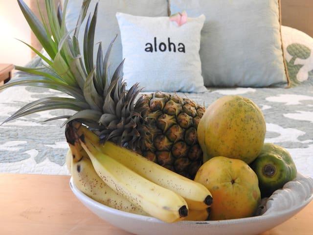 Aloha Suite