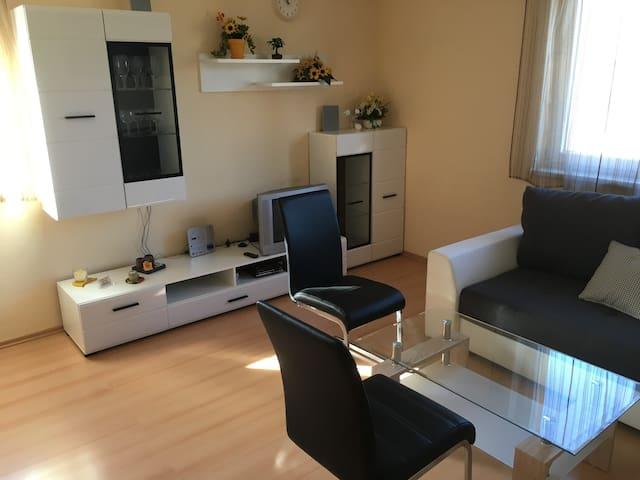 Ferienhaus Bolliger Apartment 2