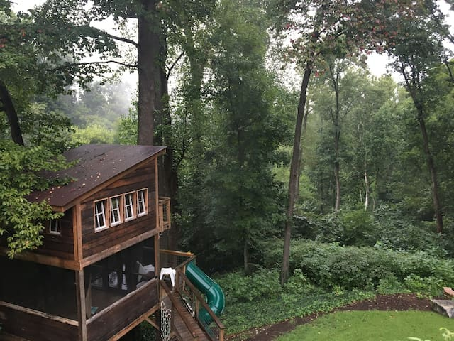 This is a shot of the treehouse in the morning. Notice how the fog is rising up from the river (which is located just past the trees). Richmond has some beautiful, foggy mornings on the river.