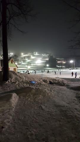 Ski In/Ski Out Condo on Boyne Mountain - Boyne Falls