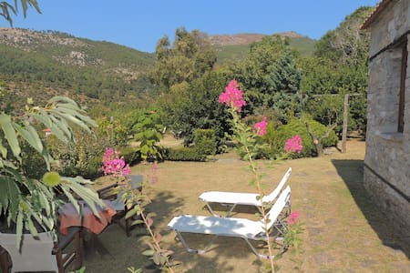 Villa Kazaviti - Bungalow, Mikro Kazaviti, Thassos - Thasos
