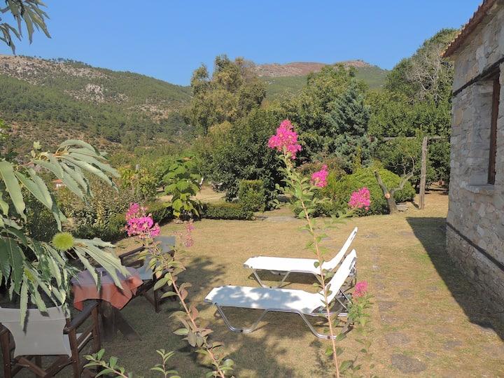 Villa Kazaviti - Bungalow, Mikro Kazaviti, Thassos