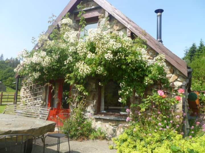 Cottage Dolgellau (sleeps 8) with hot tub
