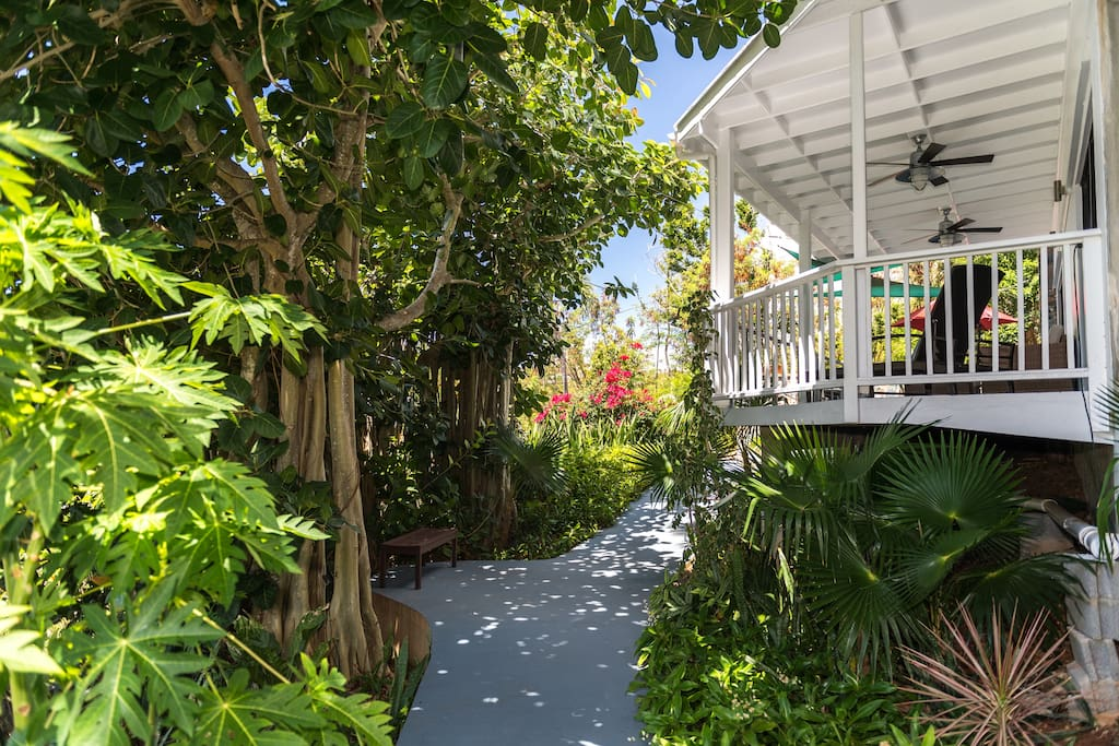 Walkway to your suite with lots of green!