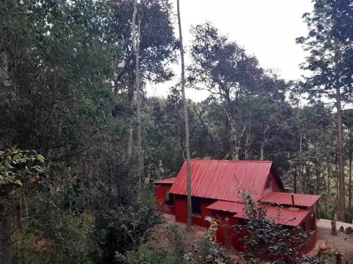 Cabaña roja en el bosque San Jose del Pacifico