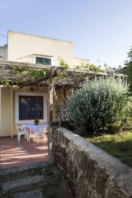 La cantina case in affitto a ventotene lazio italia for Case in affitto con cantina