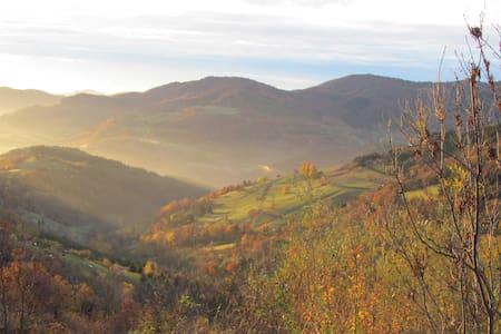 Roulotte en pleine nature Ardèche verte - Lalouvesc