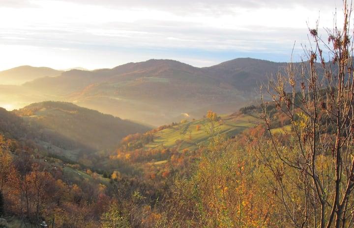 Roulotte en pleine nature en Ardèche verte.