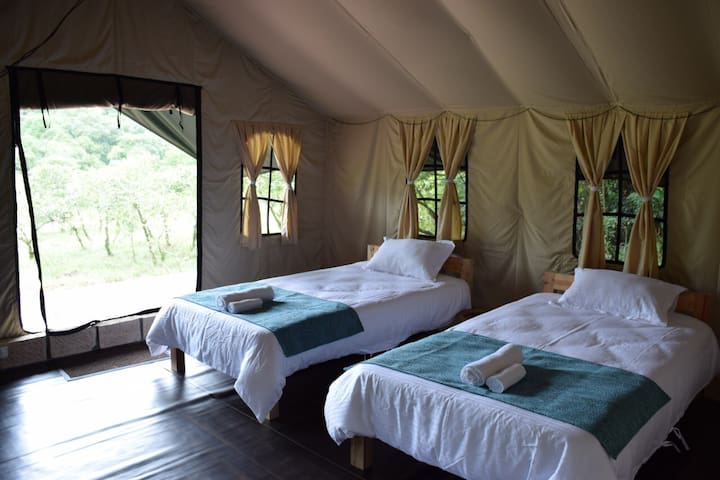 Luxury Lakeside Camping at Mawsynram, Meghalaya