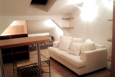 Lublin Studio na skraju lasu