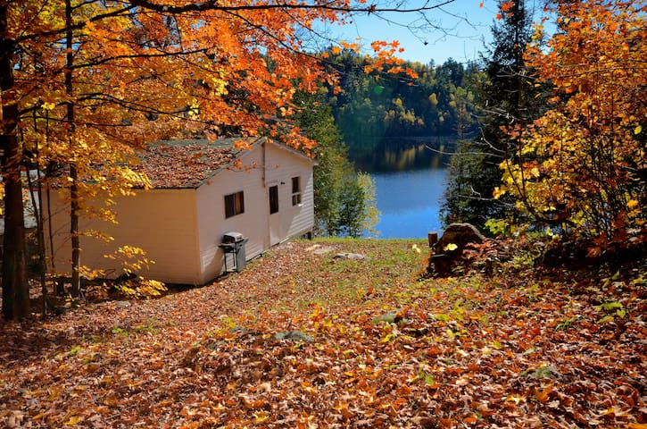 Lakefront Cottage On Baptiste Lake, Bancroft