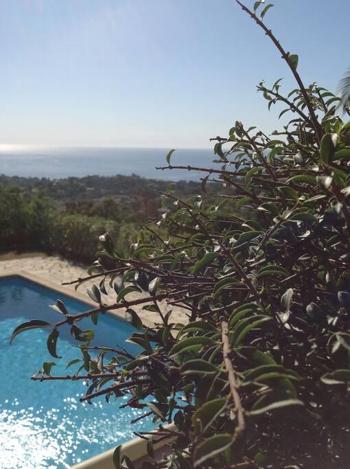 Villa de charme avec piscine villas louer cavalaire for Camping cavalaire sur mer avec piscine