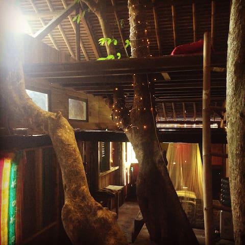 Treehouse Budget Accomodation Second Floor
