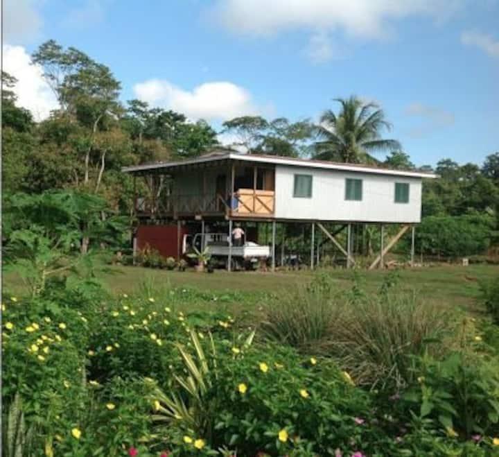 Garden Estate, farmland, coconuts, ponds, flowers