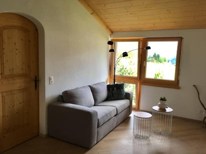 Heimelige, moderne 2.5 Zimmer Dachwohnung