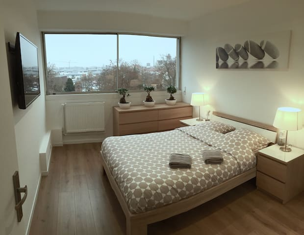Colmar - Spacious and comfortable 3 rooms of 75m2 - Colmar - Departamento