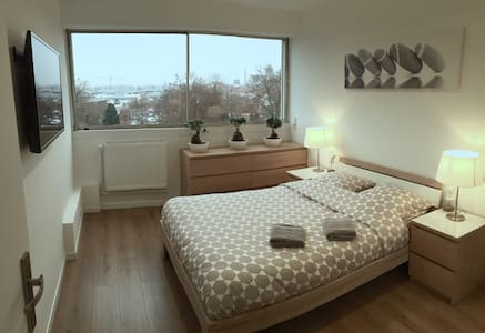Colmar - Spacious and comfortable 3 rooms of 75m2 - Colmar - 公寓